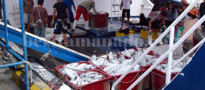 Sektor perikanan Kota Bitung (foto beritamanado)