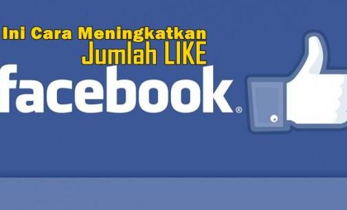 Ini TIPS Meningkatkan Jumlah Like Fanpage di Facebook