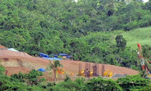 MMP Mengaku Rugi, VONNIE PANAMBUNAN: Salah Sendiri !
