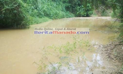 Awas !!! Dua Ekor Sapi Mati Mendadak, Sungai Totok Diduga Beracun