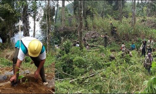 Dari Penanaman 1.000 Pohon di Perkebunan Lupa Lelah Kakaskasen II