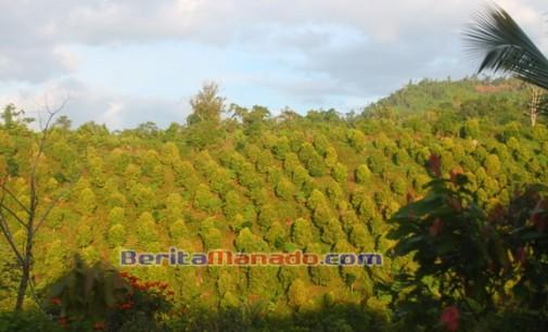 Desa Atoga 'Banjir', Masyarakat Senang