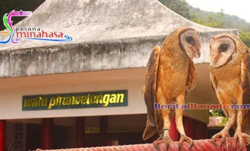 Bersahabat !!! Kalau Burung Boleh, Manusia Juga Pasti Bisa