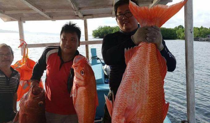 Tonny Rawung sangat dekat dengan masyarakat perikanan