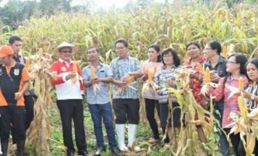 Wawali Sebut Sektor Pertanian Bitung Sangat Menjanjikan