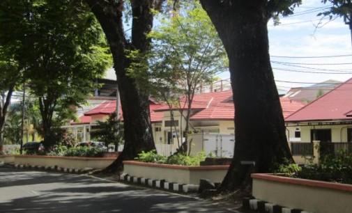 ROY MARAMIS Usul Pemkot Manado Ganti Pohon di Jalan dengan Duku