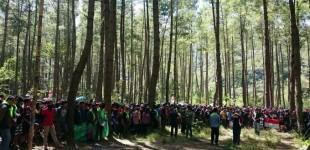 FKPA Sulut Minta Penyadapan Getah Pinus di Soputan Dihentikan