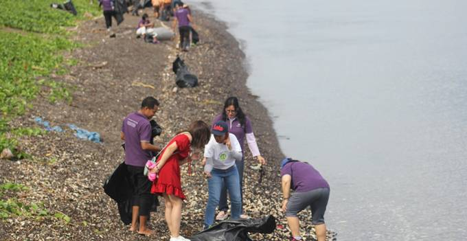 Beach Cleaning Mercure (foto ist)