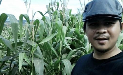 Sektor Pertanian Itu Seksi dan Primadona