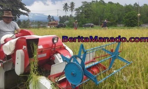 OLLY DONDOKAMBEY Klaim Pemprov Cetak 2.400 Hektar Lahan Sawah Baru