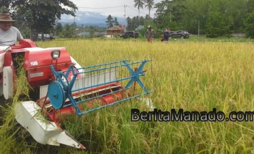 Ini Penyebab Nilai Tukar Petani Sulawesi Utara Rendah Menurut EDDYSON MASENGI