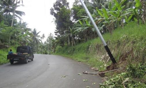 Pohon Tumbang Mengganggu Jaringan Listrik, PLN Butuh Aturan Begini