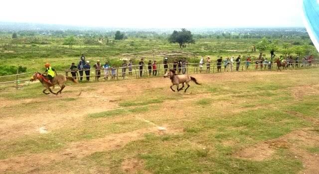 arena Pacuan Kuda Poi Poruntu Jajaki Kelurahan Petobo, Kecamatan Palu Selatan, Kota Palu
