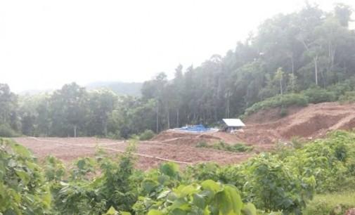 Astaga !!! Perusahaan Asing Illegal Terus Rusak Hutan Alason