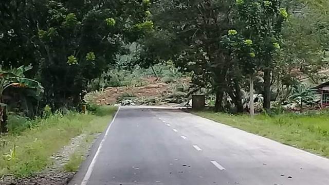 Jalan trans Sulawesi Tertutup Material Longsor