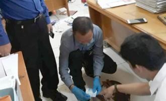 Sekretariat DPRD Minut Gempar, ASN Ditikam Suami Saat Bekerja