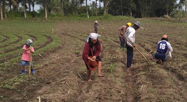 Kegiatan penanaman kedelai Kelompok Tani Weruan. (Foto:IST)