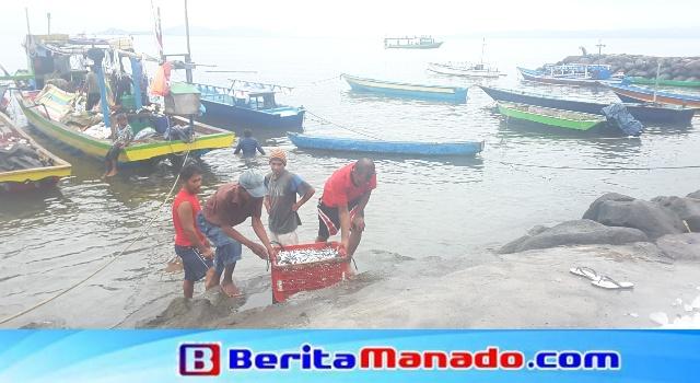 Sejumlah nelayan gotong royong mengangkat ikan dari perahu ke darat melewati tangga darurat.