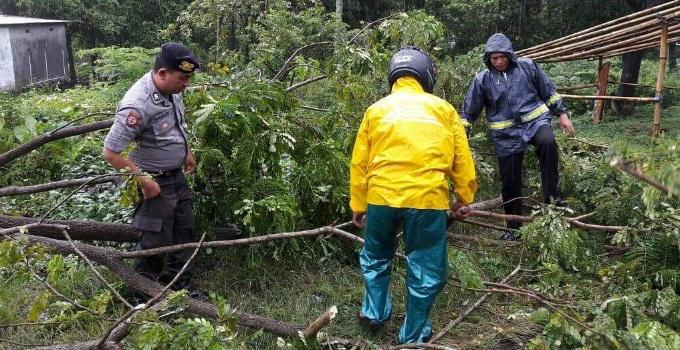 Kanit 2 SPKT Polres Minut Ipda L Simanjuntak (kiri) membersihkan dahan pohon sehingga tidak mengganggu lalu lintas.