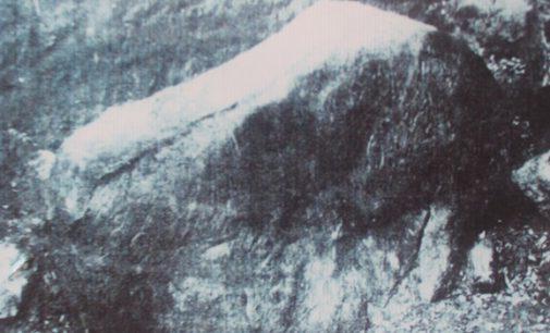 Wacana 7 Juli Hari Bhineka Tunggal Ika Relevan Dengan Sejarah Minahasa
