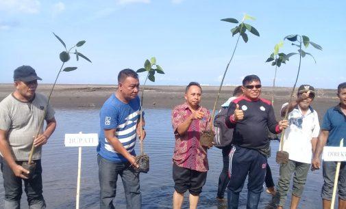 Peduli Lingkungan, MPA Anemon Tanam 300 Bibit Manggrove
