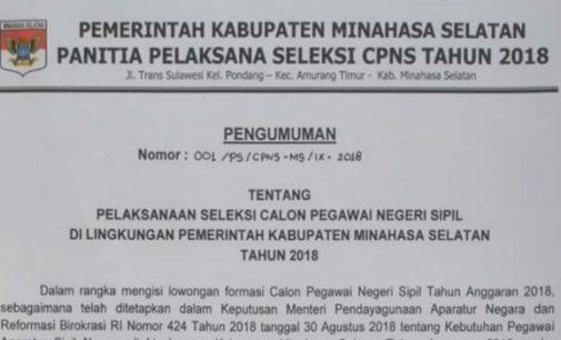 Begini Formasi Kebutuhan CPNS Minsel 2018