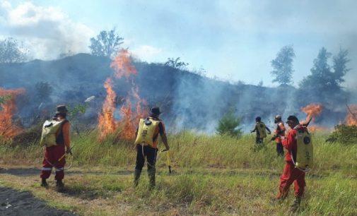 Polres Bitung Lidik Penyebab Kebakaran TWA Batuangus