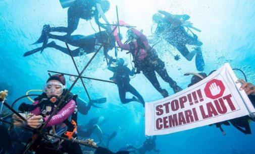 Rehabilitasi Coral untuk Bunaken Lebih Baik