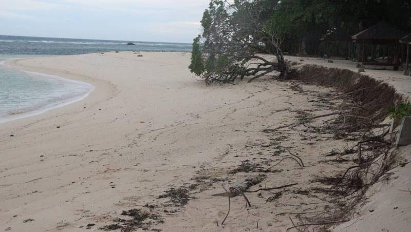Pantai di Pulau Gangga, Sulawesi Utara mengalami erosi parah pada tahun 2015, Gambar diambil oleh Piet Paulus Prong